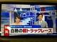 写真:第4回軽トラ世界一決定戦 TV放映されました~♪